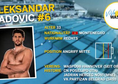Aleksandar Radovic